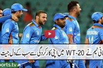 World T20 in review