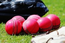 Get used to pink-ball Tests, says Kiwi boss