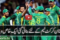 Tribute to Pakistan Cricket 2014