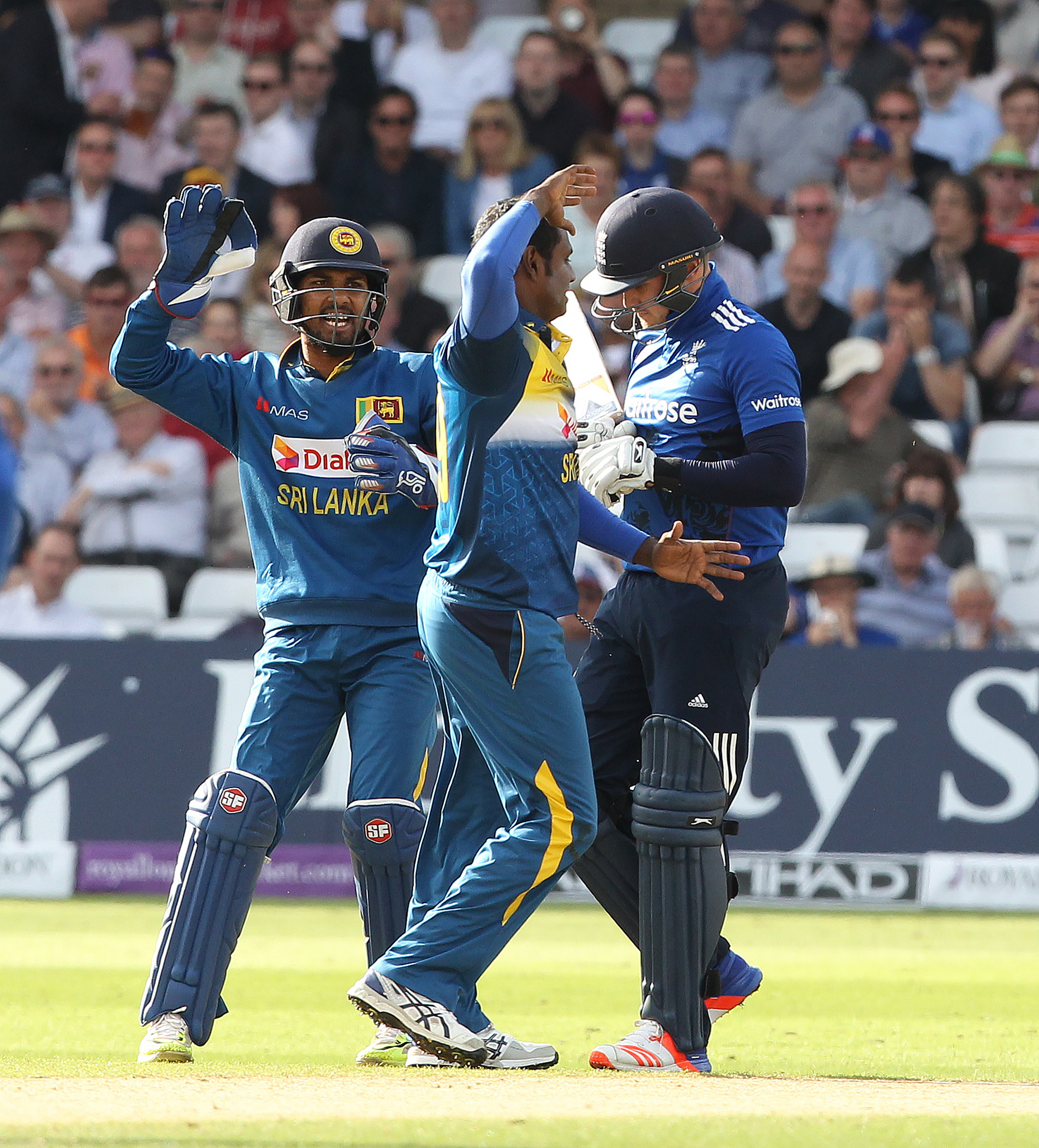 Sri Lanka's captain Angelo Mathews (C) celebrates taking the wicket of Jason Roy (R) during play in the first one day international (ODI) cricket match between England and Sri Lanka at Trent Bridge cricket ground in Nottingham, central England, on June 21, 2016. Sri Lanka captain Angelo Mathews top-scored with 73 as his side were held to 286 for nine by England in the first one-day international in Nottingham on Tuesday. / AFP PHOTO / Lindsey PARNABY