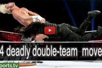 14 more double-team moves: WWE Fury