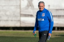 Brazil name Tite as new coach