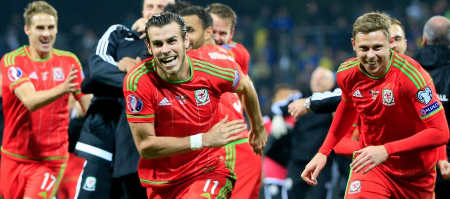 Wales can achieve great things after Euro 2016 – Coleman