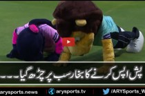 Pinky the Panther or the Pakistan Cricket Team?