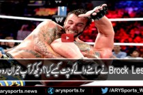 CM Punk vs Brock Lesnar Summerslam