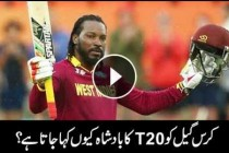 7 facts about Chris Gayle