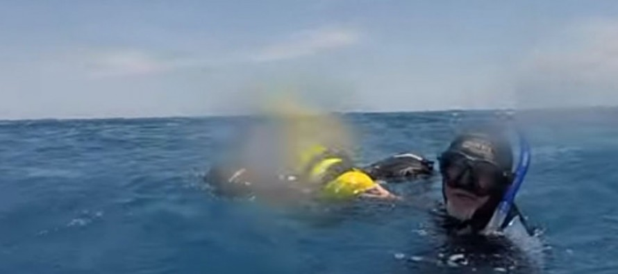 Diver survives 8 hours in shark-infested waters off Australia