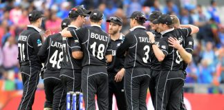 Williamson hails 'brilliant' New Zealand after World Cup stunner