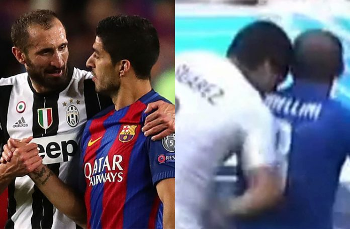 Chiellini admires Suarez for biting him at World Cup
